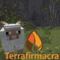 TerraFirmaCraft реалистичное выживание