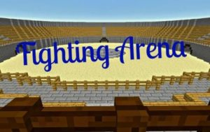 Fighting Arena