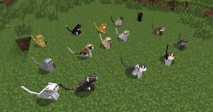 Not Enough Cats мод на новые раскраски котов 1.7.10, 1.10 ...