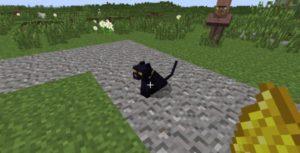 Not Enough Cats новые раскраски котов