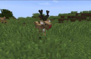 Mystic World 4 новых животных