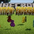 Ignition: EnderBags