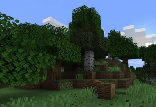 Trees Do Not Float падение дерева и опадание листвы при срубании ствола