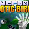 Exotic Birds экзотические птицы