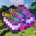 Living Enchantment прокачка инструментов и оружия