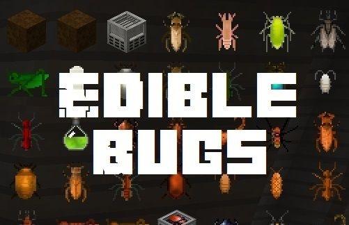Edible Bugs съедобные личинки и жуки