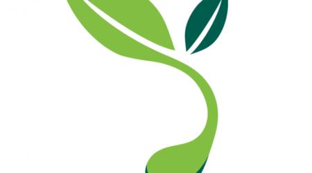 Emerging Technology выращивание растений используя гидропонику