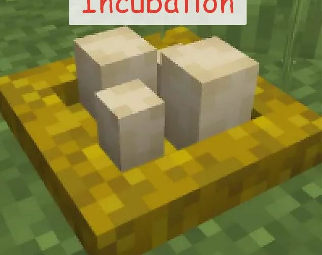 Incubation гнездо для кур