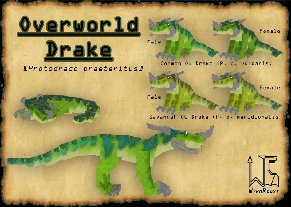 Wyrmroost новые виды драконов