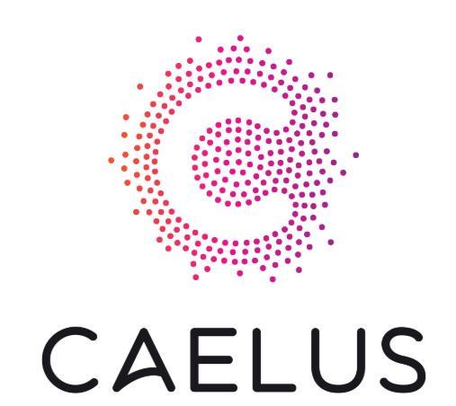 Caelus API ядро