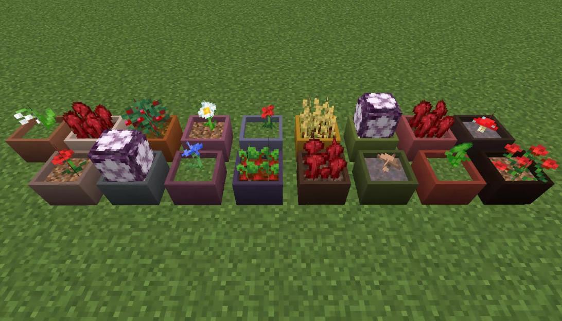 Botany Pots горшки для растений