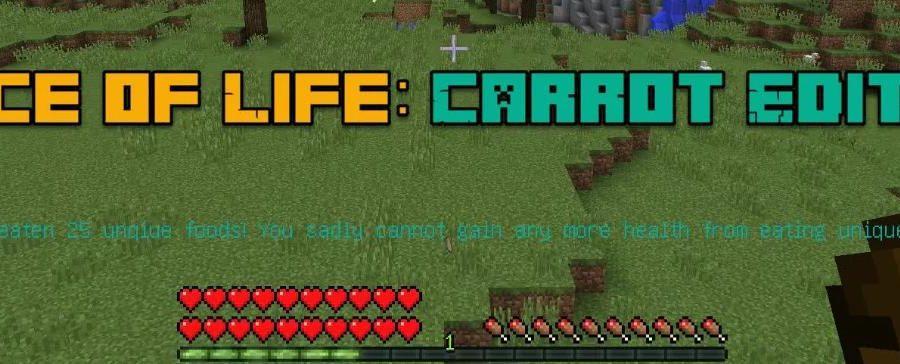Spice of Life: Carrot Edition дополнительное здоровье за правильное питание