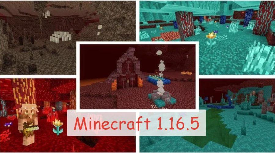 Майнкрафт 1.16.5
