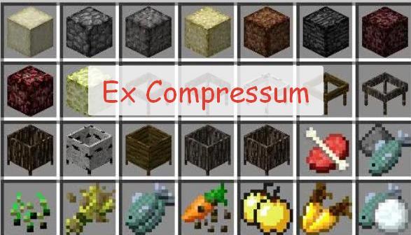 Ex Compressum автоматизация процессов