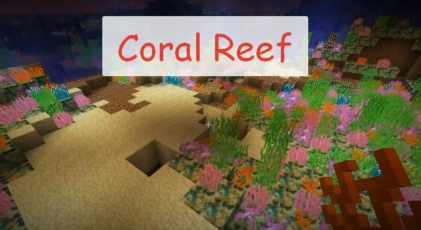 Coral Reef кораллы и водоросли