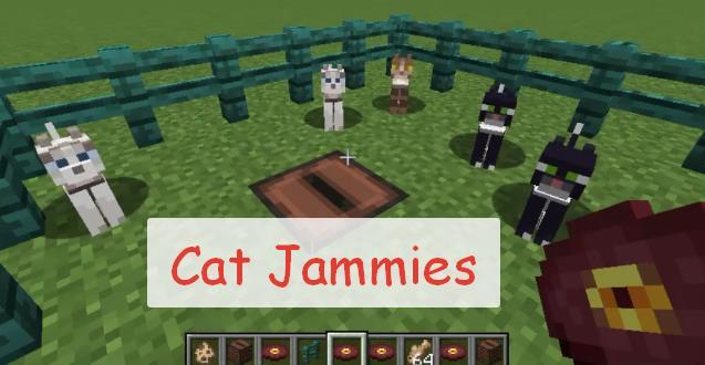 Cat Jammies коты качают головой под музыку