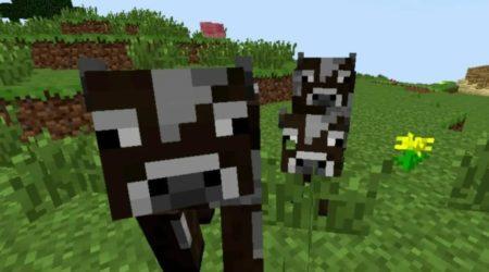 Скин коровы