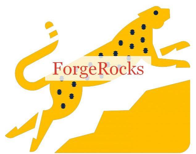 ForgeRocks библиотека