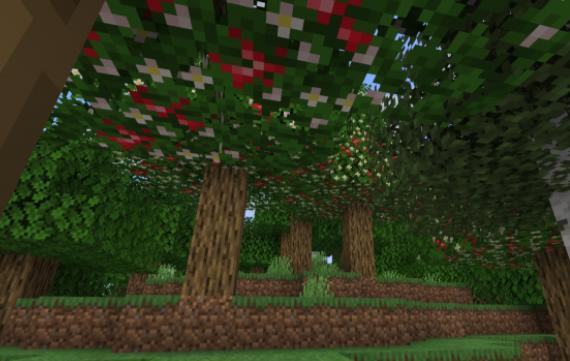 Fruitful яблони с яблоками