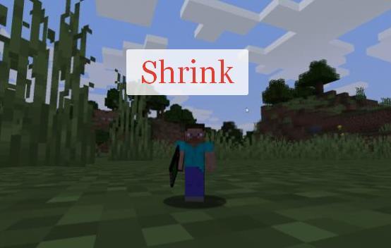 Shrink устройство для изменения размера игрока и мобов