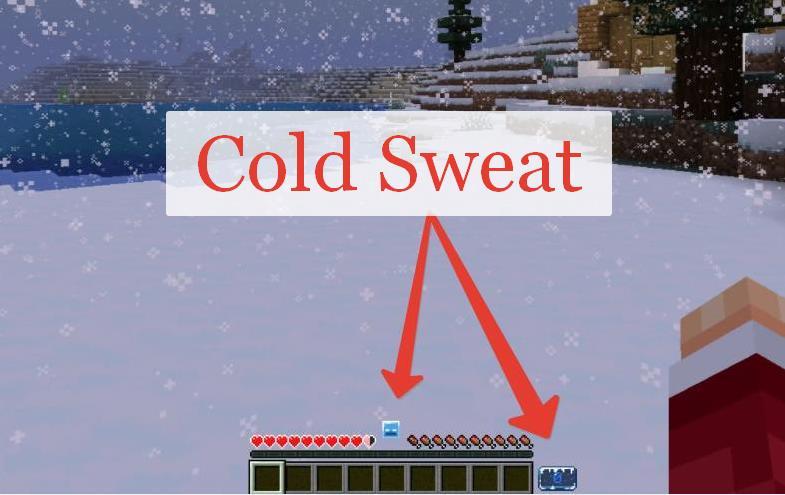 Cold Sweat температура в Майнкрафт